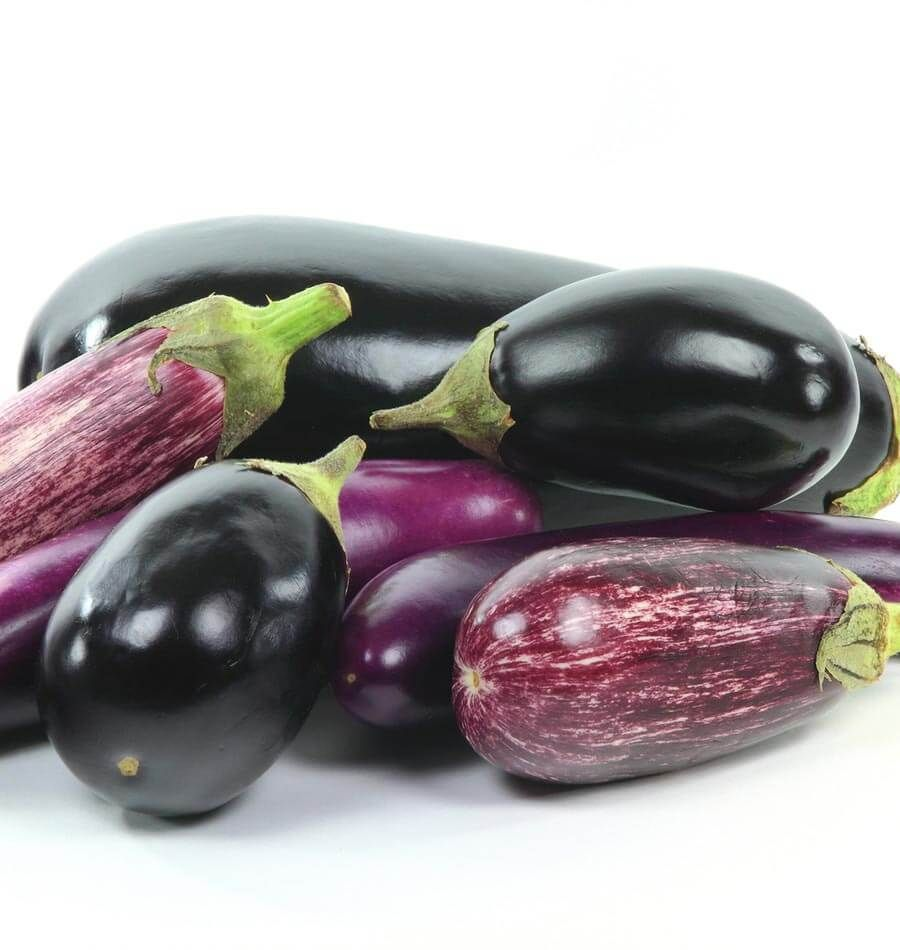 How To Grow Eggplants (With Images)
