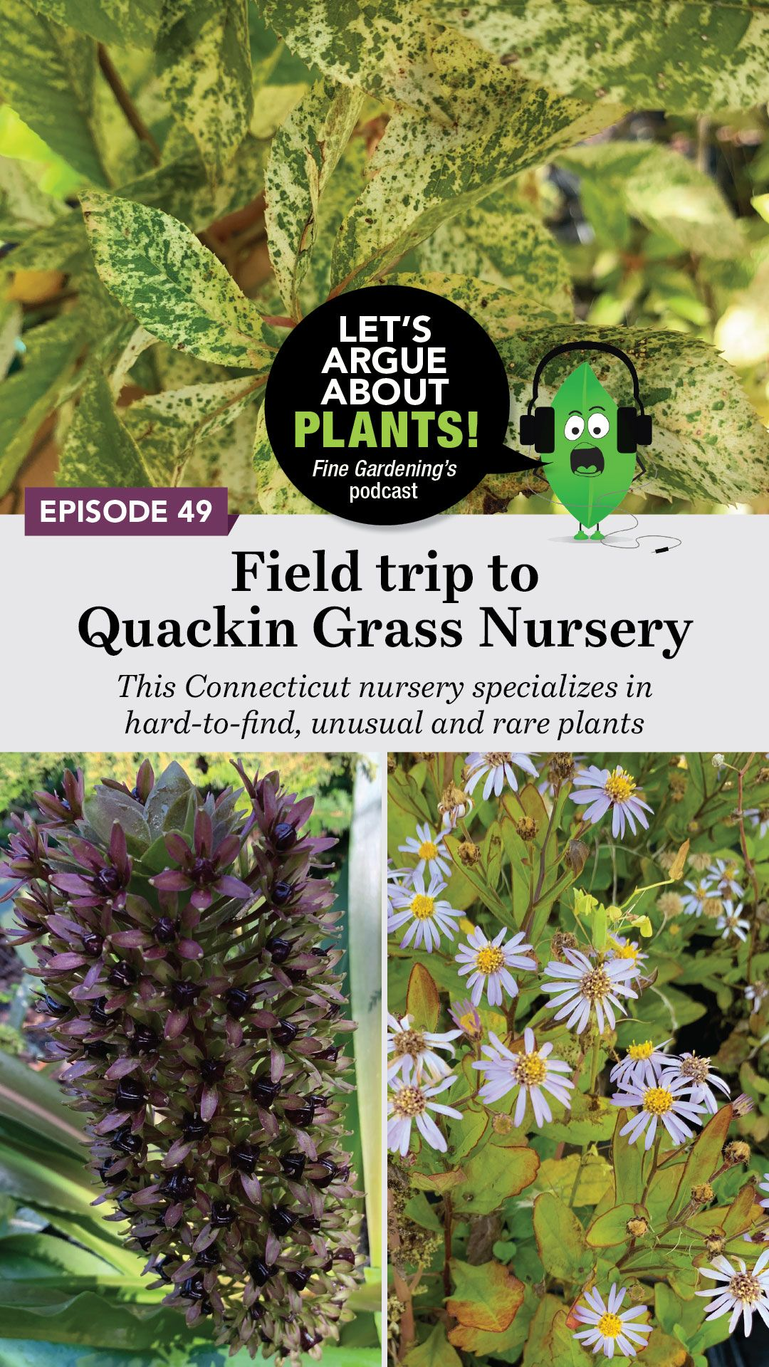 Episode 49 Visit To Quackin Grass Nursery With Images Fine