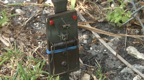 4 EACH Trip wire alarms Paintball perimeter alarm DIY Prepper, Camping