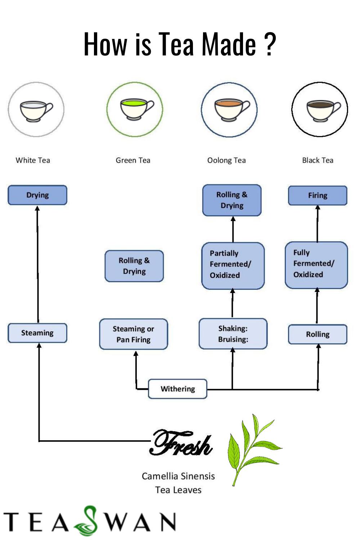 Photo of Buy Variety of Tea Online   TeaSwan.com