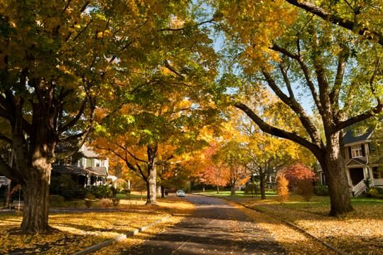 Preparing your home for a fall sale