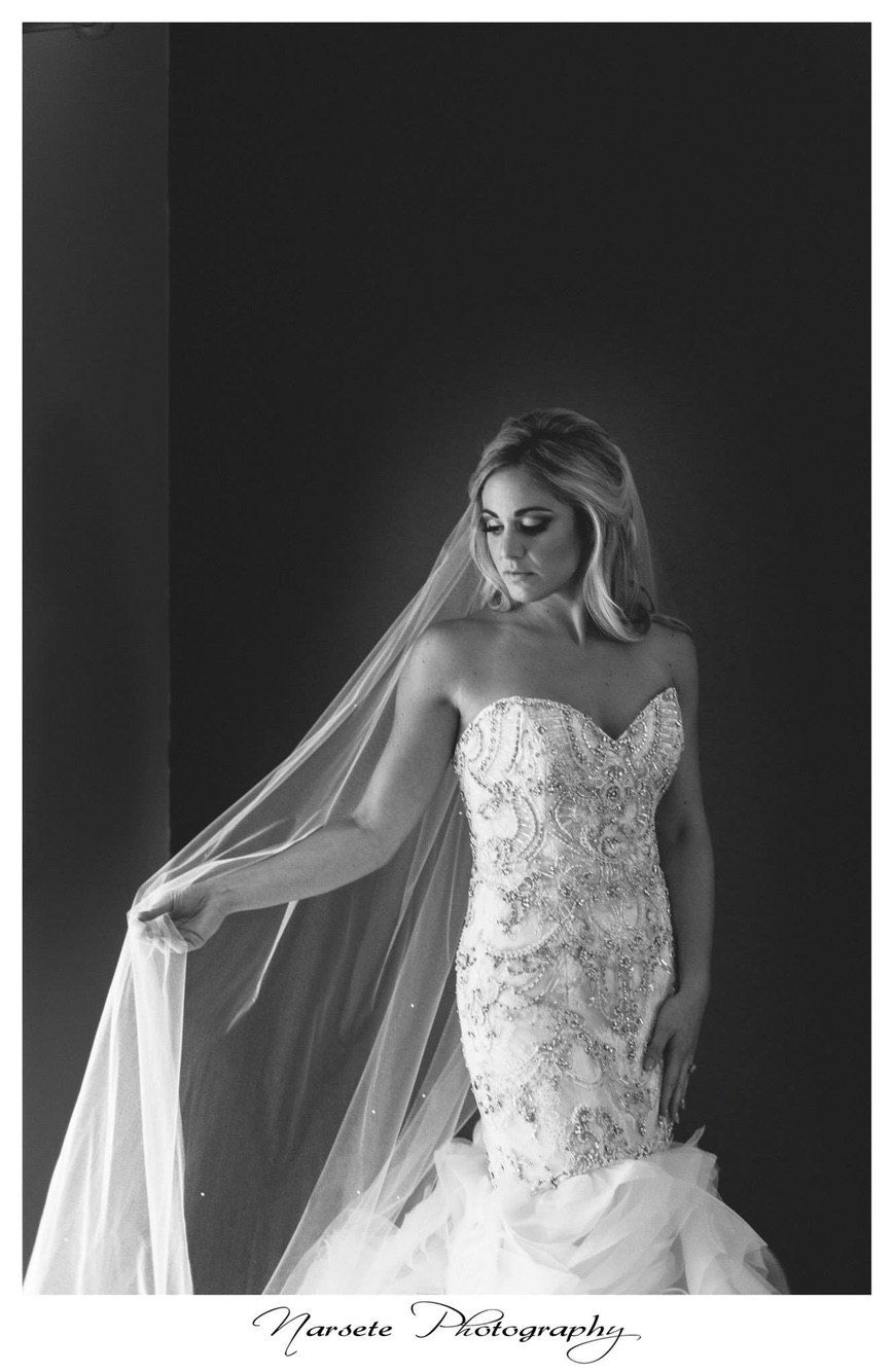 Wedding Veil Swarovski Crystal Rhinestone Cathedral by