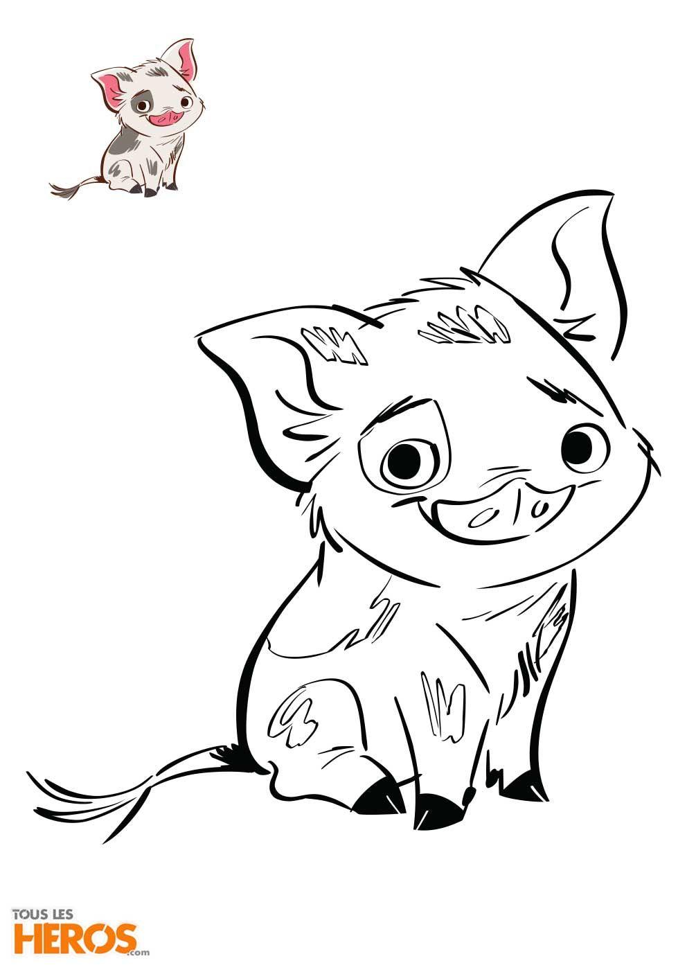 Le Petit Cochon Dans Le Film Vaiana A Colorier Disney Coloriage