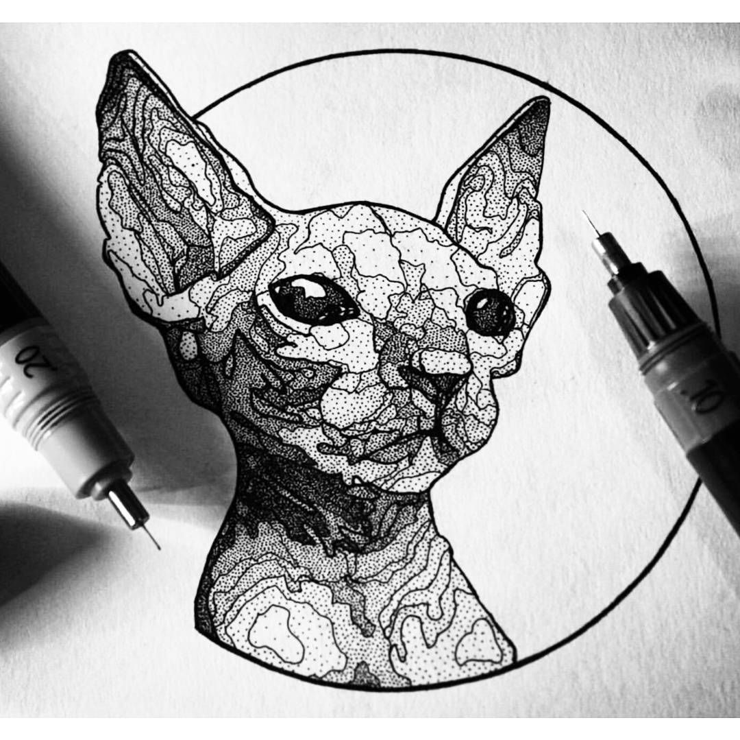 Sphynxcat Whiskers Stippling Black And White