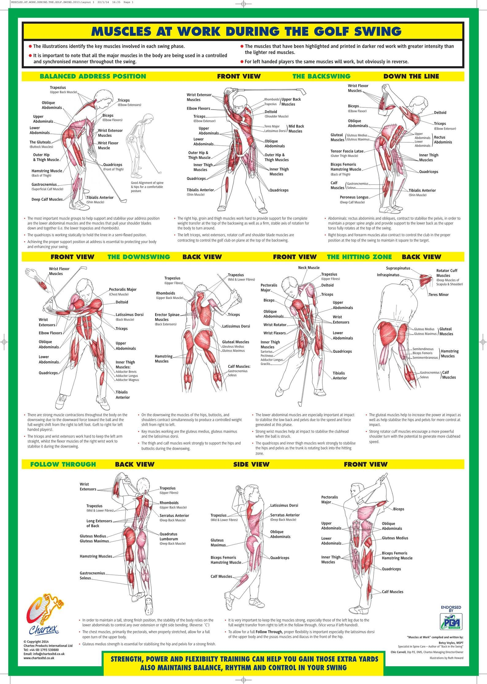 Golf Swing Training Poster Golf instruction Chart