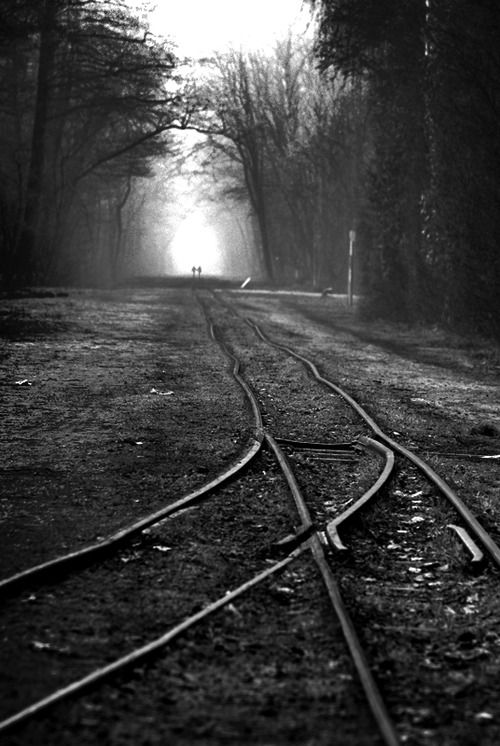 Creepy Tracks With Images Real Nature Train Tracks Railroad