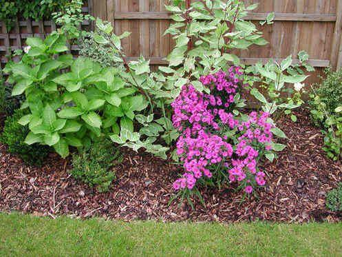 Border With Bark And Membrane Garden Design Garden 400 x 300