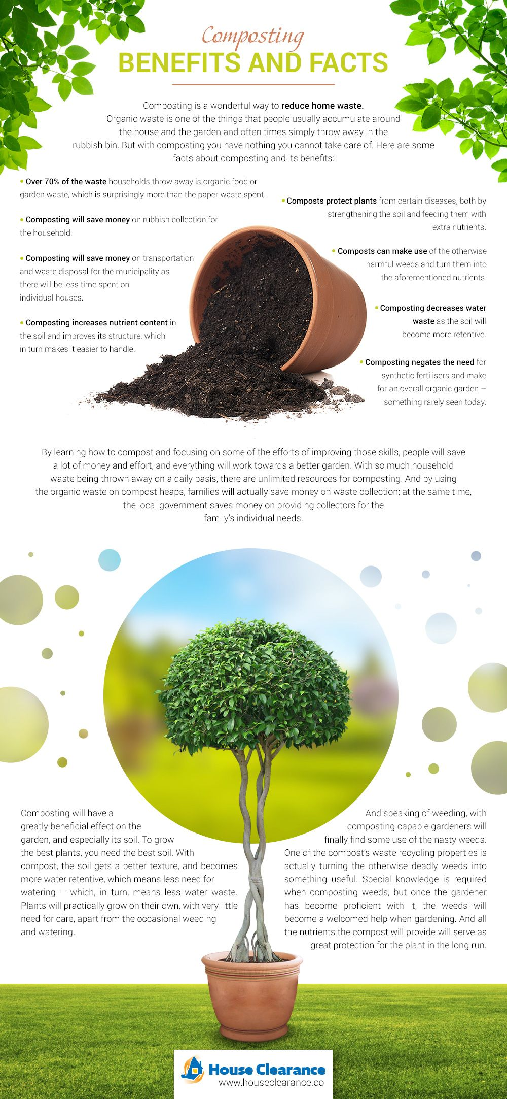 beauteous trees to plant near house. Make your garden beauteous again via some helpful composting tips and  advises