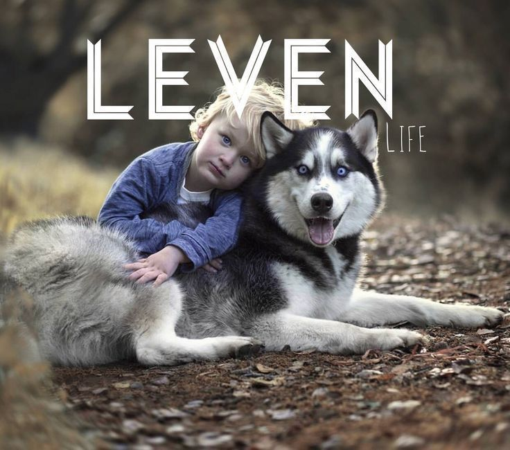 Leven meaning: life L names boy names names that start ...