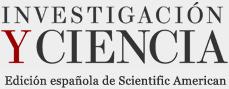 La influencia del intestino en el cerebro | Mente y Cerebro | Investigación y Ciencia