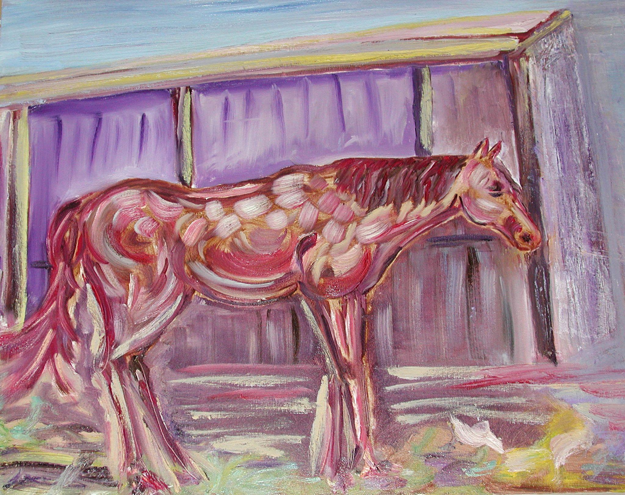 Painted Pony. by Francie Fillatti