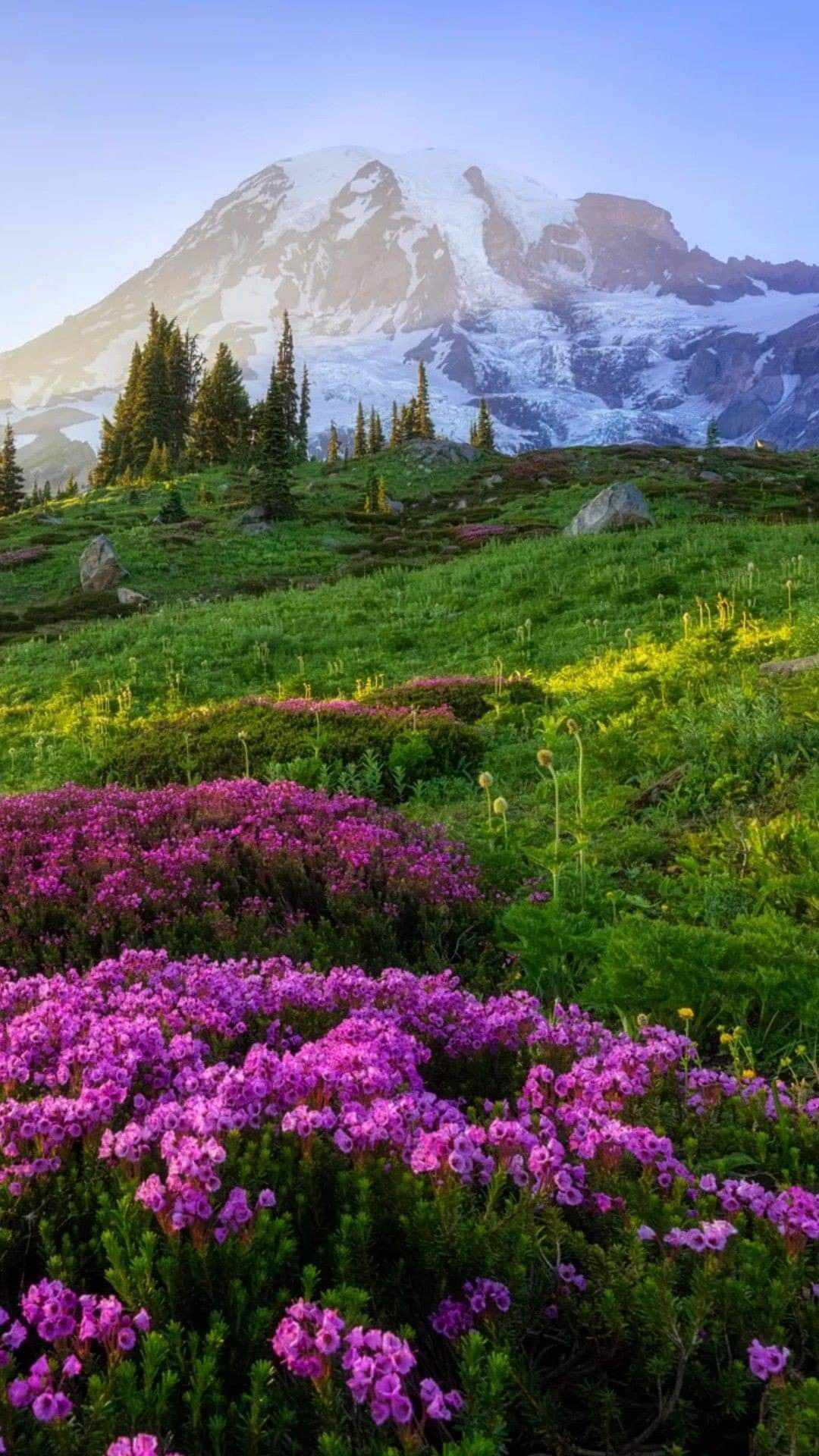 Absolutely Beautiful Colors Especially The Purple In 2020 Beautiful Landscapes Beautiful Nature Landscape Photography