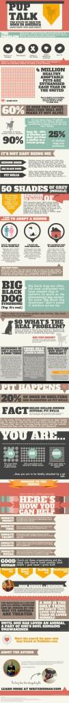 The Pet Shelter - Piktochart Infographics