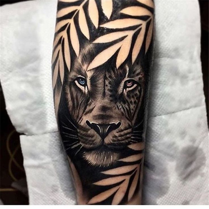 Photo of 48 Delicate Animals Tattoo Ideas That Will Give You Inspiration – #Animals #Deli…