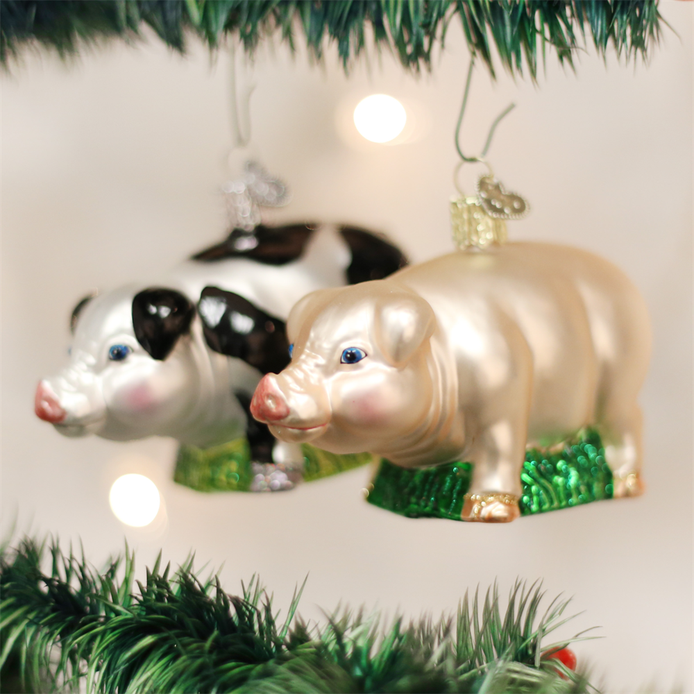 Pigs are considered to bring good luck and prosperity. In Germany, the word dickbauch means fat stomach, and it is often heard in December. According to tradition, you should eat well on Christmas Eve to avoid being haunted that night and to insure luck and prosperity in the New Year. - Christmas - National Cowboy Museum