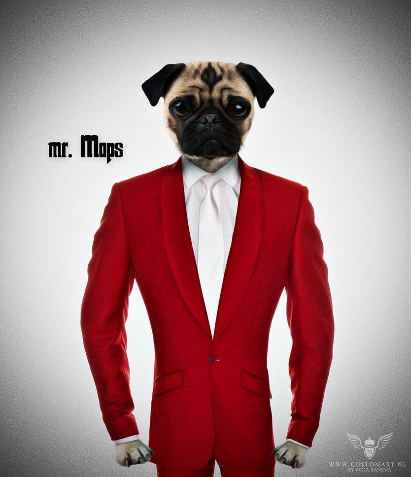 Digital art, digital artwork, dog, suit, custom art, photoshop, digital photography, digial photoanipulation