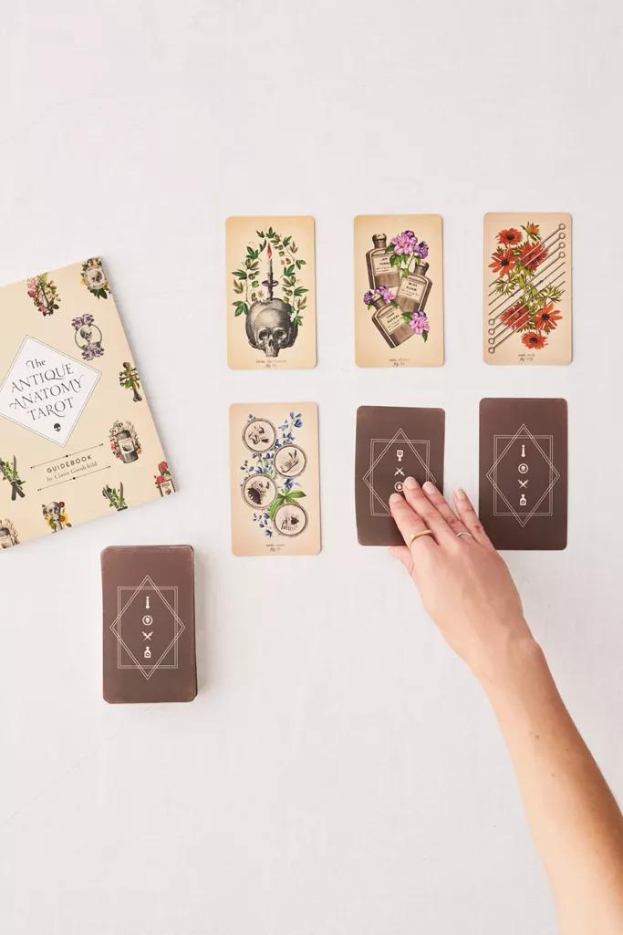 The Antique Anatomy Tarot Kit Deck And Guidebook For The Modern Reader By Claire Goodchild Urban Outfitt Tarot Cards Art Unique Tarot Decks Tarot Card Decks