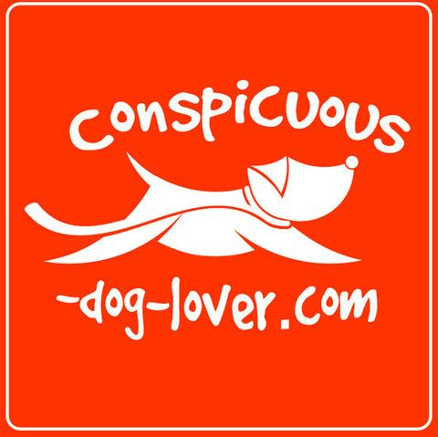 Square red and white conspicuous dog lover logo car sticker 2 x 2 vinyl car sticker that leaves no residue but speaks loudly