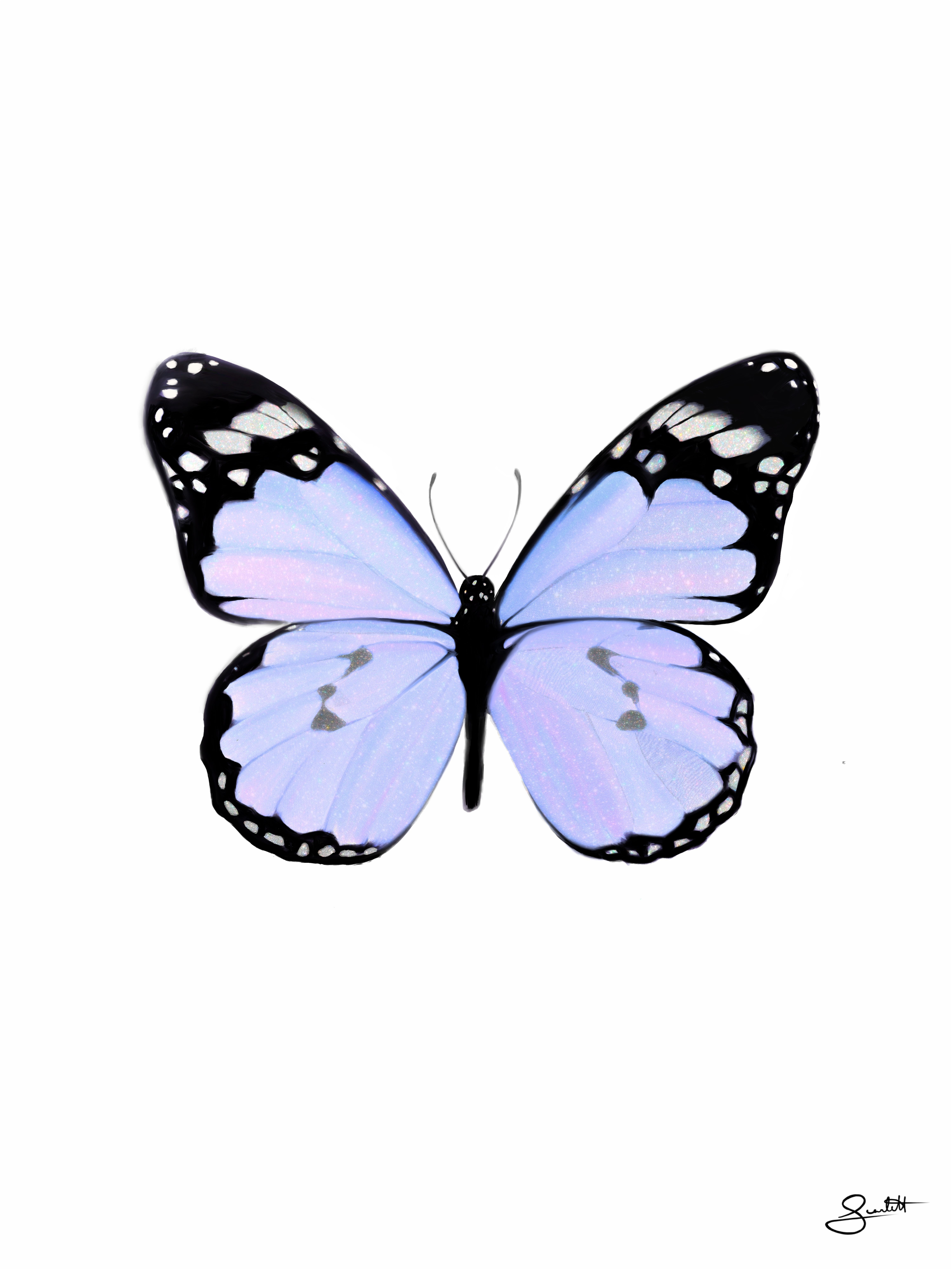 4ff96ab2994b5ae0f84ab9cec331d3c2 » Butterfly Drawing Aesthetic