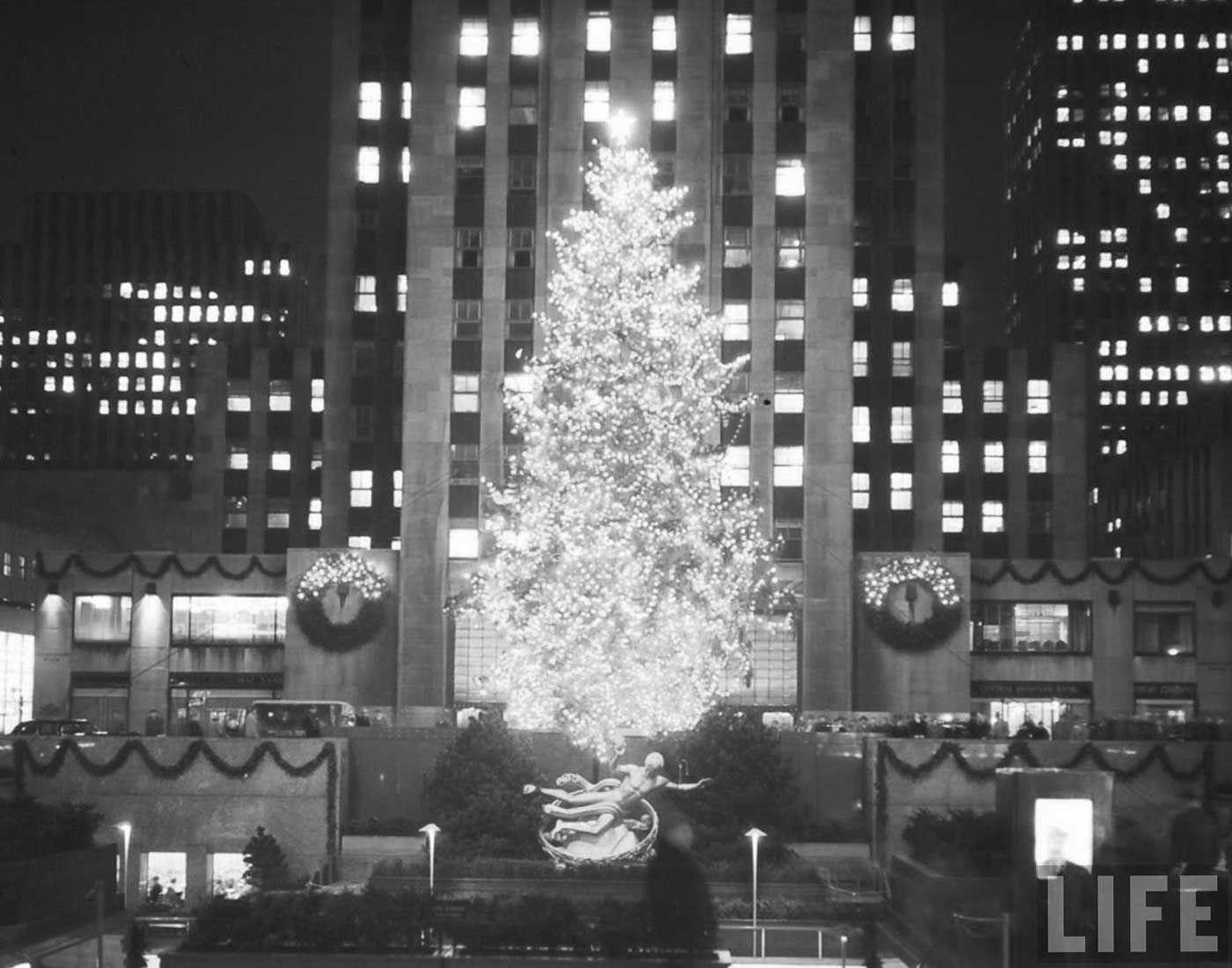 Vintage christmas trees and putzes 1910 - Christmas In Ny
