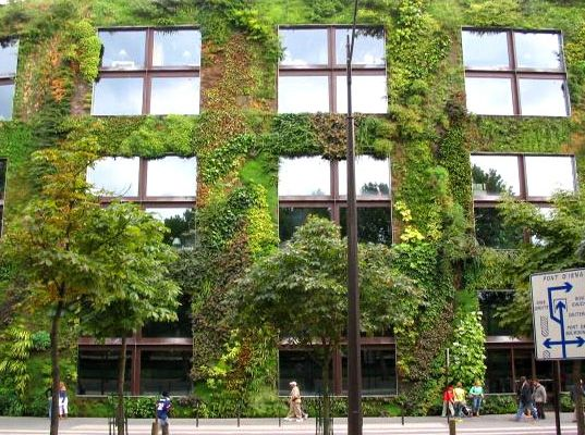 green wall source inhabitat com lifeinstyle greenwithenvy