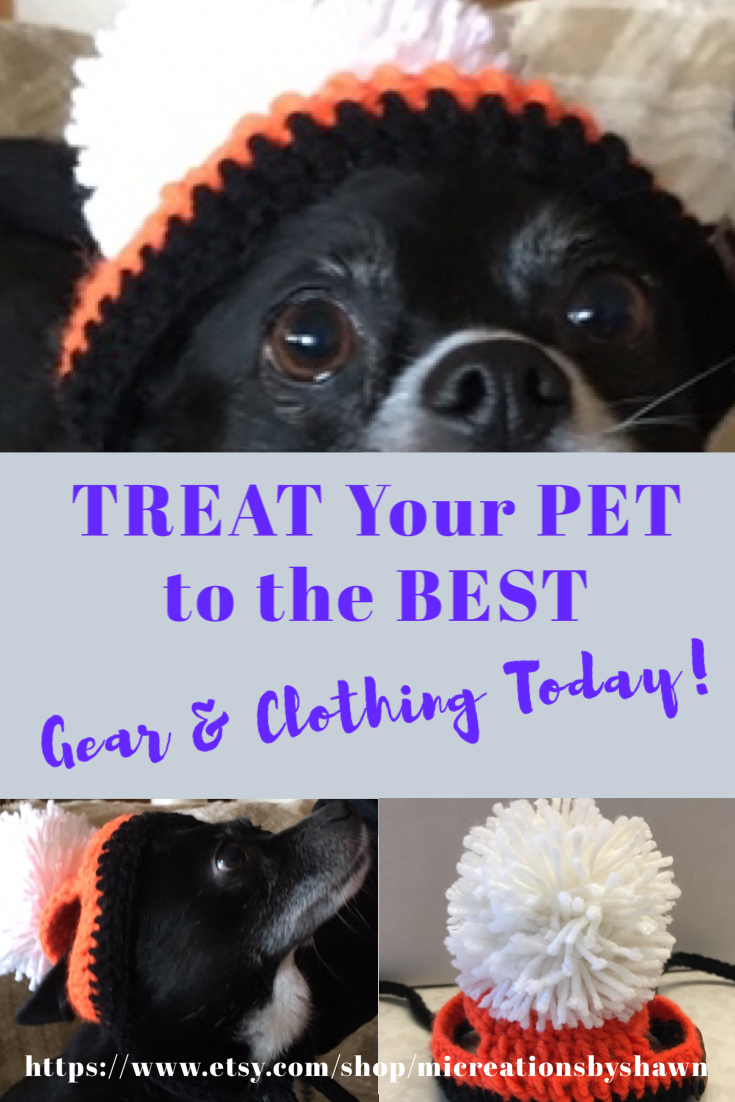 Best Pet Clothing Gear How To Find The Best Pet Accessories