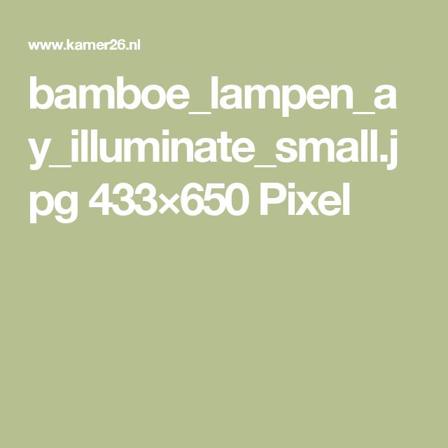 bamboe_lampen_ay_illuminate_small.jpg 433×650 Pixel