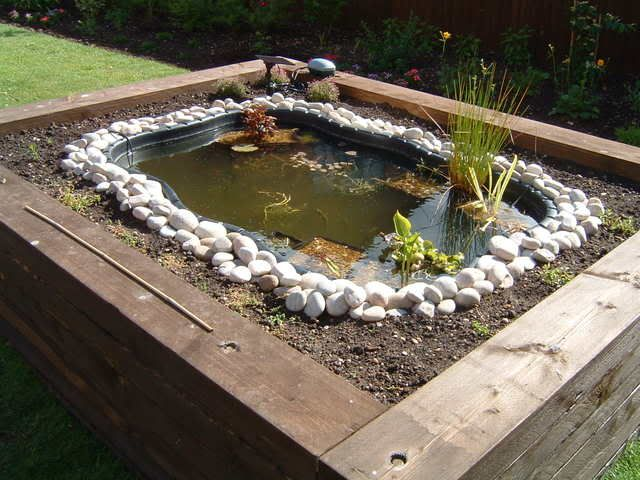 New raised pond | Garden World Discussions, perfect idea ... on Raised Garden Ponds Ideas id=92889