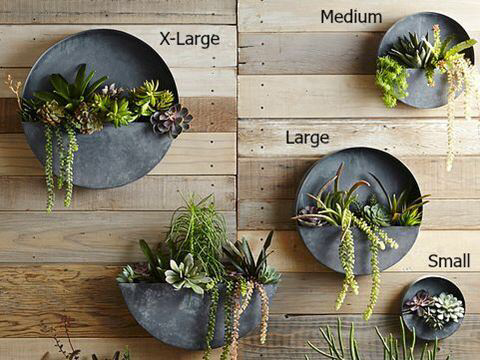 Orbea Circle Zinc Wall Planters In 2020 Hangepflanzen Pflanzenwand Und Pflanzenkubel