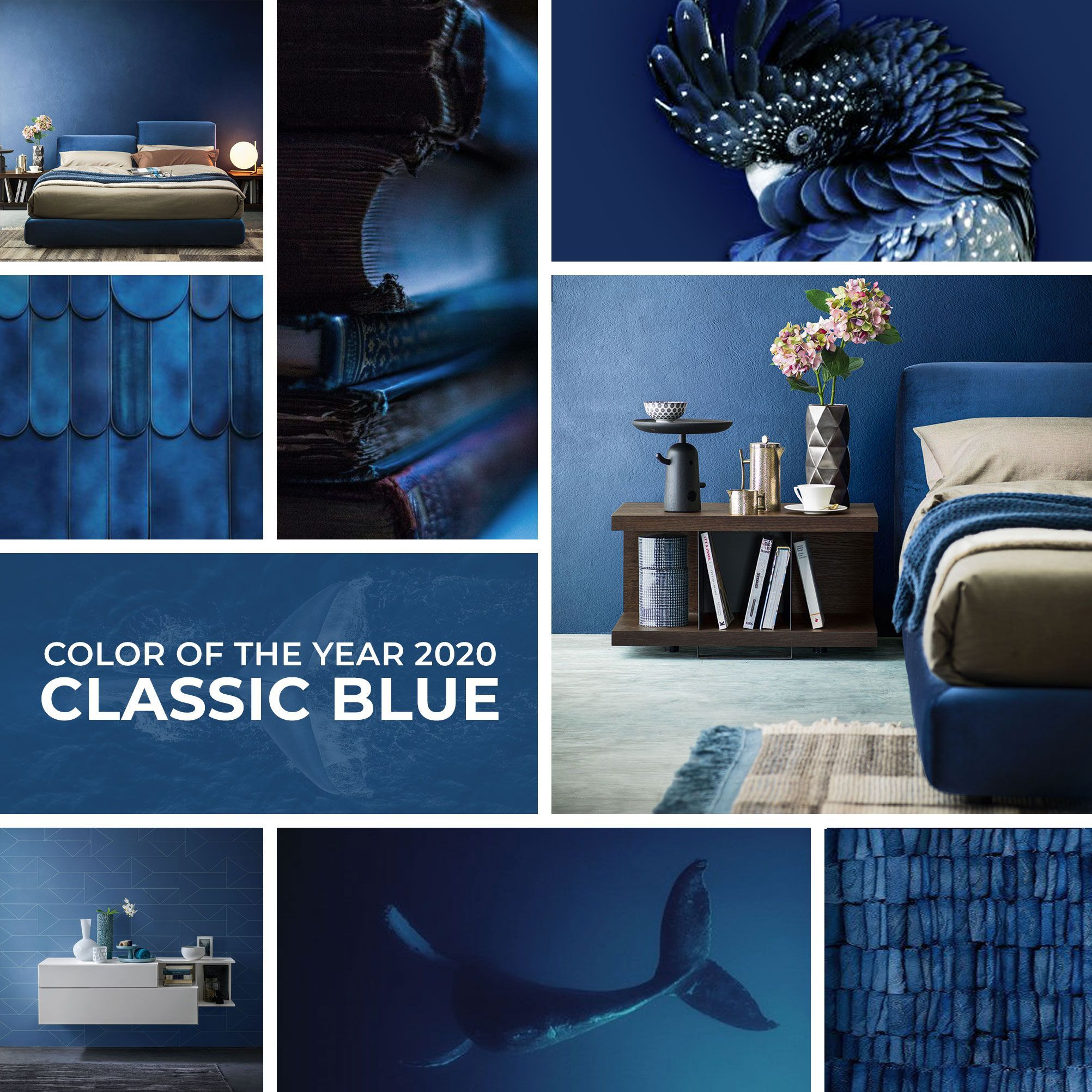 Classic Blue Pantone 2020 Rot In 2020 With Images Classic