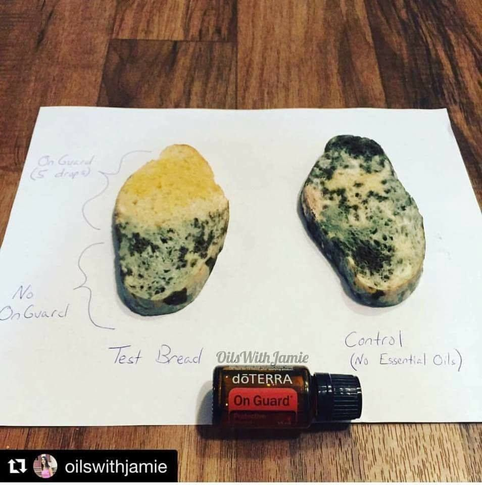 This picture shows how pure essential oils can detox and ...