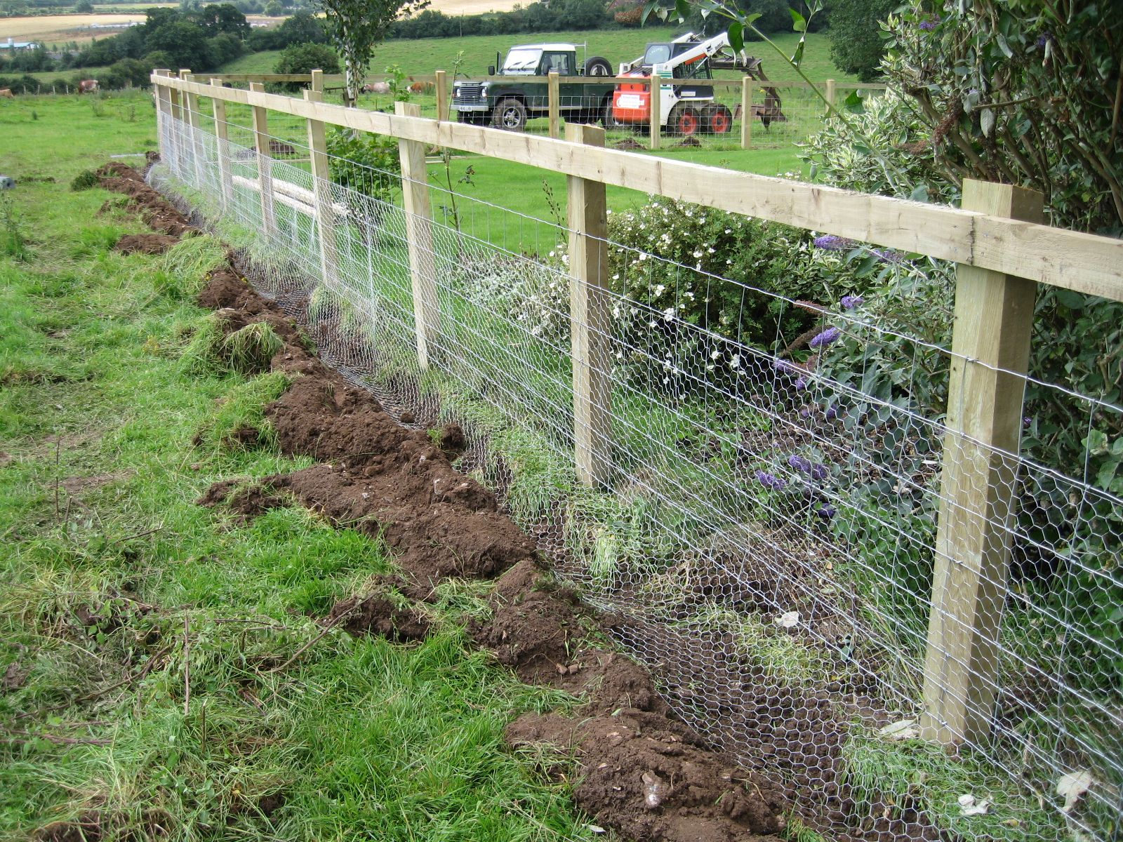 Rabbit Fencing « Richard Stubbs Fencing Keeps the rabbits