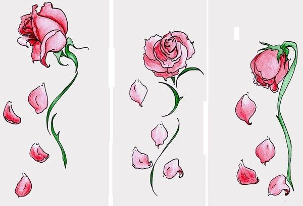 Falling Rose Petals Roses Drawing Rose Sketch Rose Tattoo