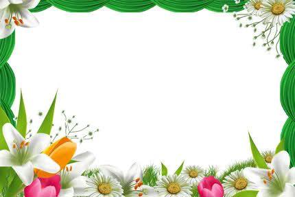 marcos de flores para photoshop imagui wallpapers and more