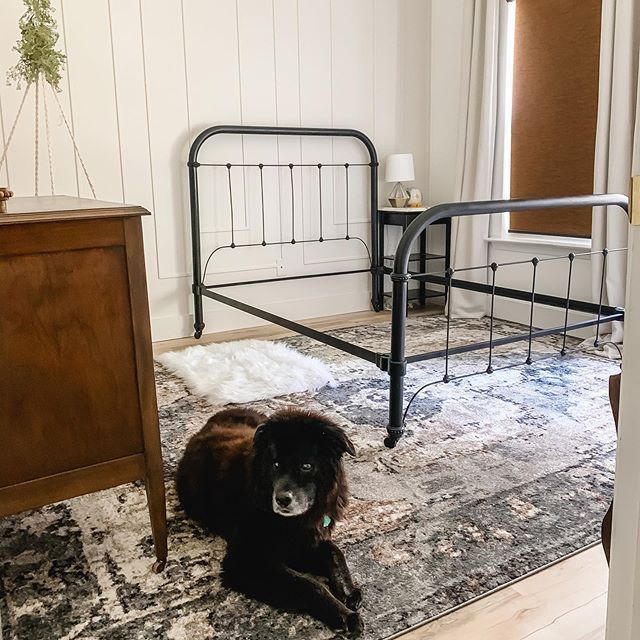 I refinished a very old metal bed that had been left to rot in a shack by the lake and turned it into a gorgeous black iron look bed for my little girl. Come see the refinishing process on my insta highlights! #girlsroom #ironbed #metalbed #dog #rug #vintagerug #vintagedresser #bedroom #girlsbedroom #bed #blackbed #blackmetalbed