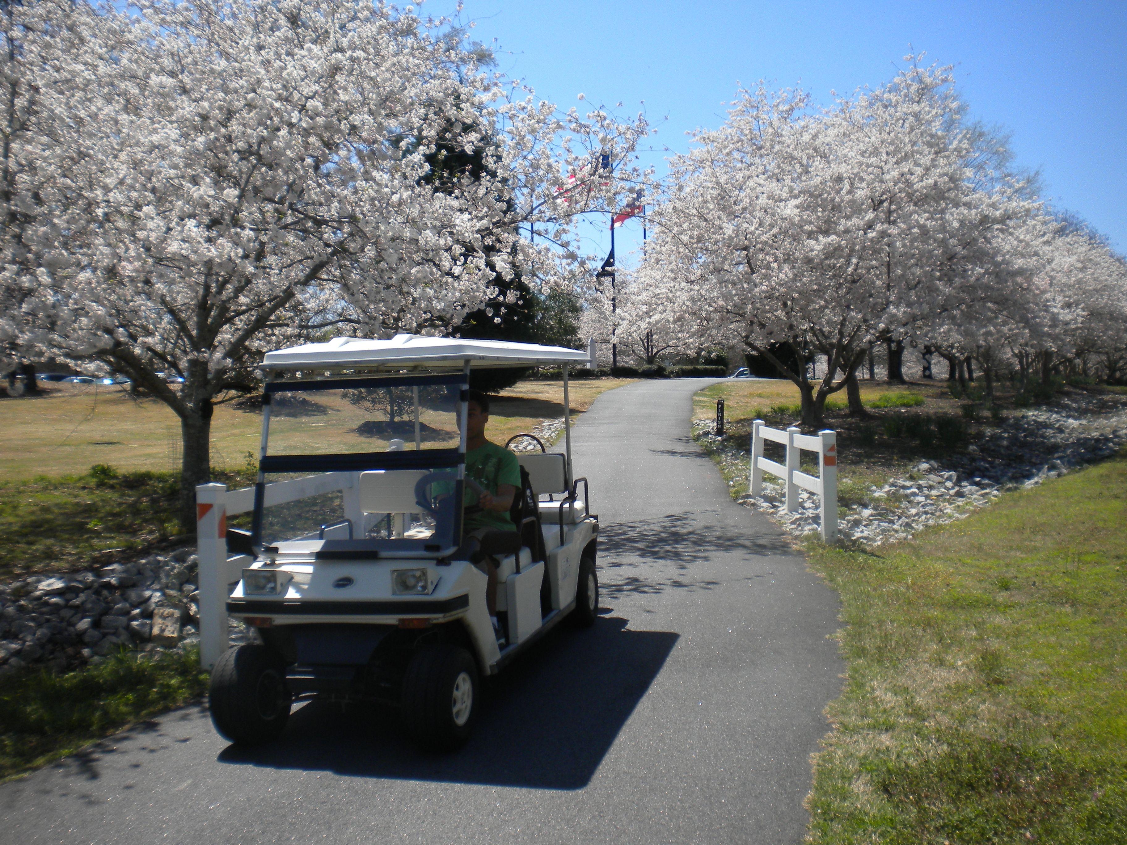 Peachtree City Georgia My Favorite Golf Cart Community Here S Why Peachtree City Golf Cart Community Golf Carts