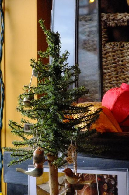 Sensible Gardening and Living - Repurposing your Christmas Tree outdoors with Bird Feeder Ideas
