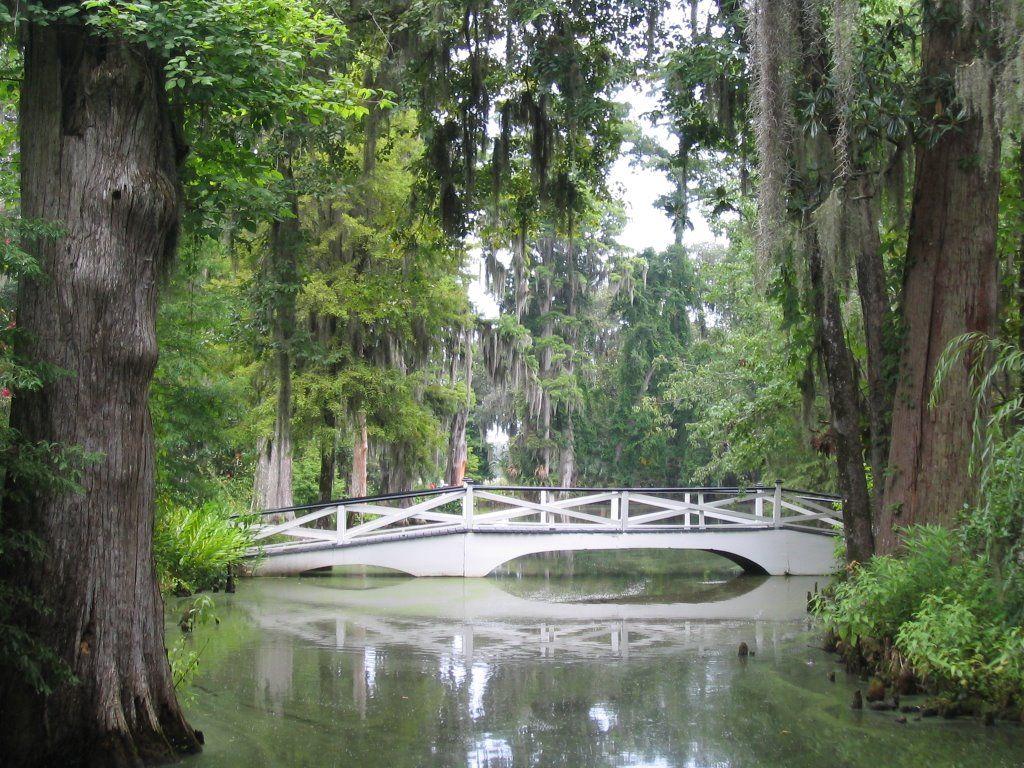 Magnolia Garden, Charleston SC