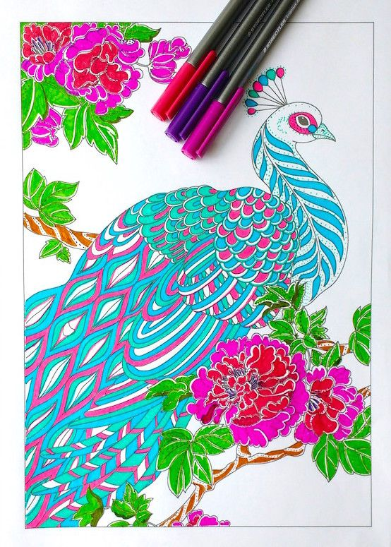 Step By Step Coloring Peacock Feathers Peacock Coloring Pages