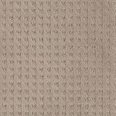 Home Decorators Collection Stonegate Color Trail Blazer 12 Ft Carpet 0259d Pt11 12 The Home Depot Indoor Carpet Carpet Discount Carpet