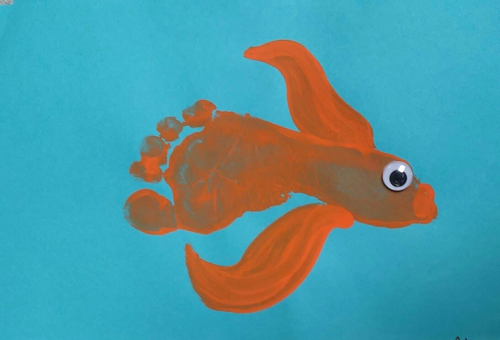 Goldfish Footprint