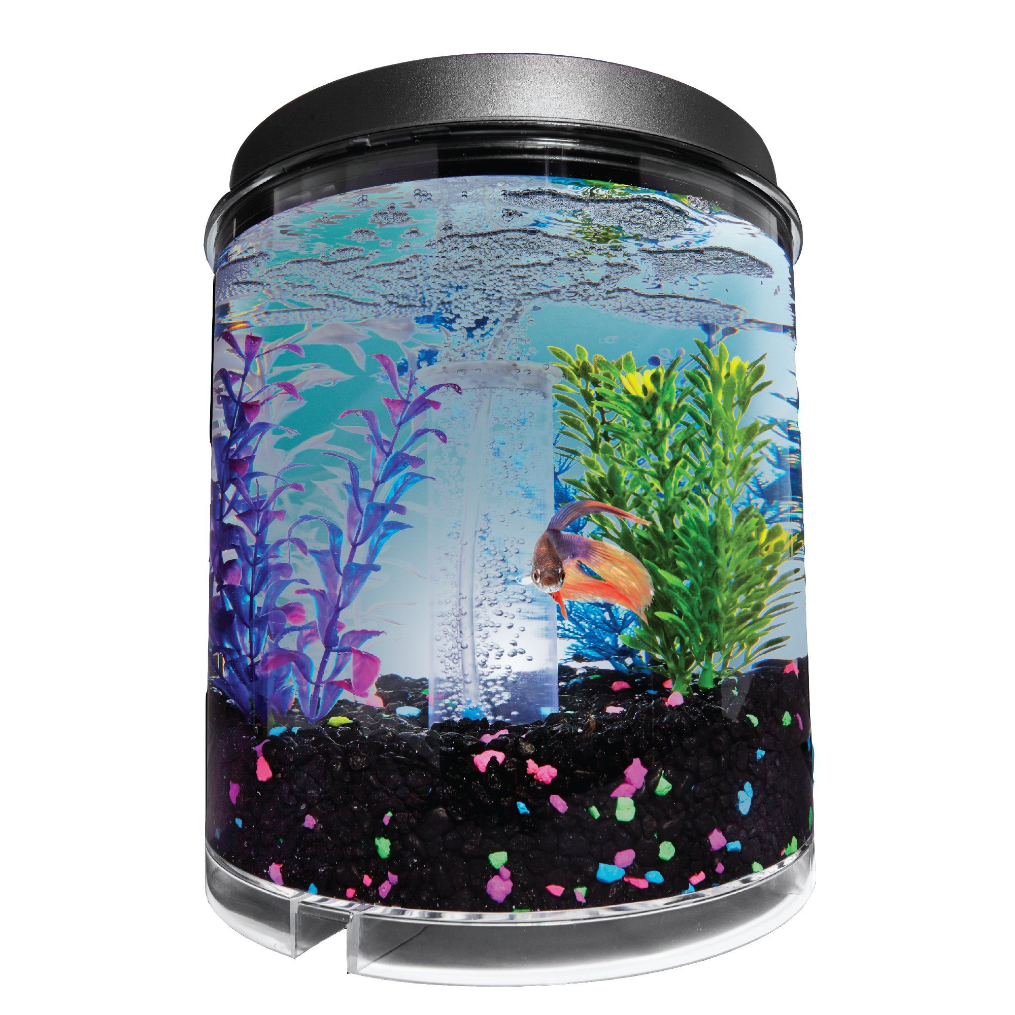 Imagitarium 2 Gallon Cumberland Tank Petco In 2020 Cool Fish Tank Decorations Cool Fish Tanks Fish Tank Accessories