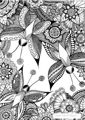 Volwassen Kleurplaten Vlinders.Kleurplaten 3 Kleuren Voor Volwassen Free Adult Coloring Pages