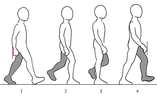 Human Anatomy Fundamentals Additional Tips Drawing People Person Drawing Human Drawing