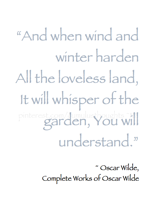 Winter Wishes Dreams And When Wind And Winter