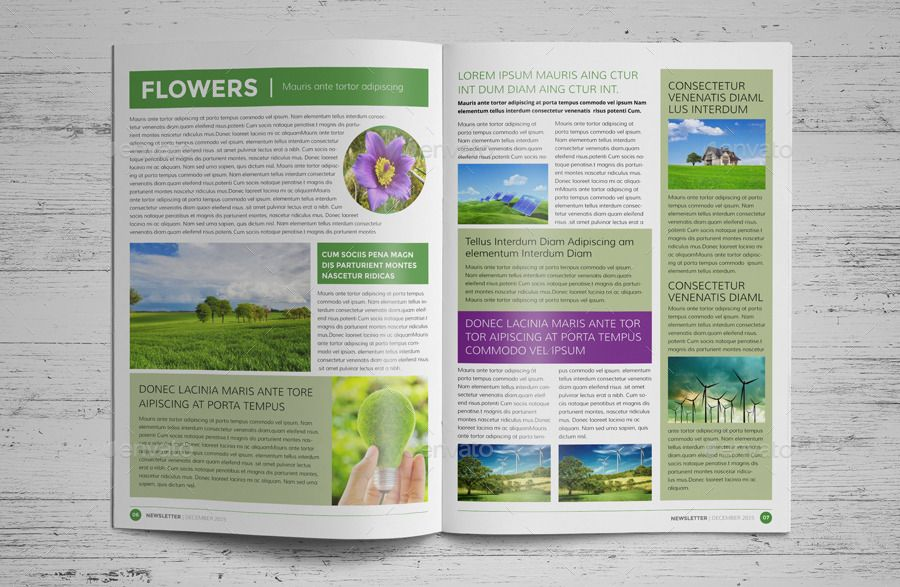 12 Page Eco Newsletter Template Indesign