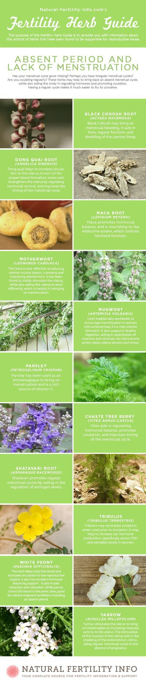 How to Use Fertility Herbs To Enhance Your Fertili