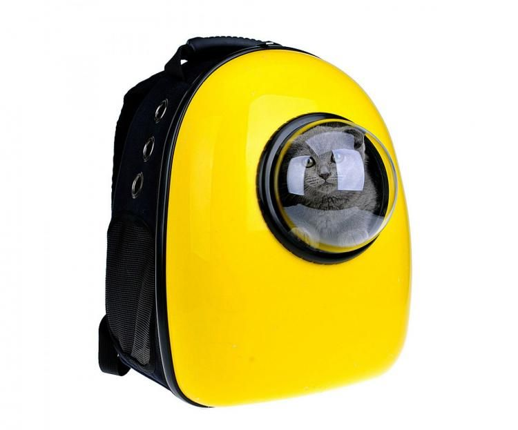 These Unique Bubble Window Pet Bags Let You Travel With Your Cat or Dog