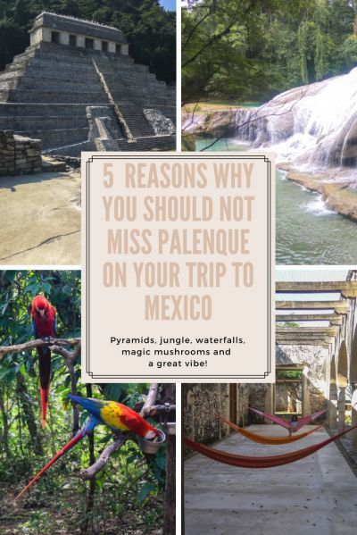 5 Reasons Why You Should Not Miss #Palenque On Your Trip