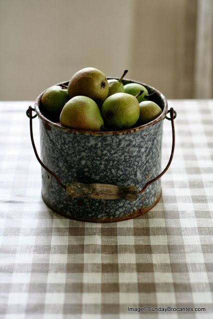 apples in a tin bucket